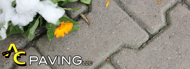 paving bricks Annapolis| paving companies Annapolis | paving companies in Maryland | brick paving Annapolis | decorative paving Annapolis